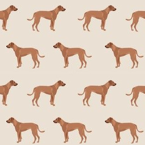 rhodesian ridgeback dog breed pet fabric tan