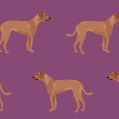rhodesian ridgeback dog breed pet fabric purple
