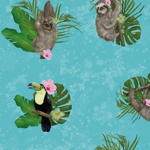 Sloths and Toucans