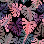 Rphoenix-tropical-pink_shop_thumb