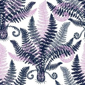 Orchid-Navy Ferns (white)