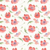 Poppies watercolor pattern