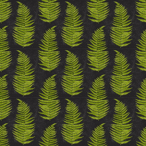 Watercolor Fern Leaves on Black Background