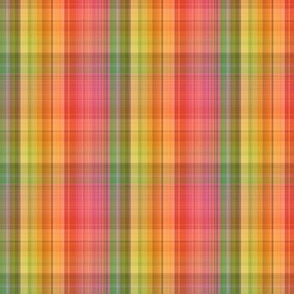 F-Bright Plaid