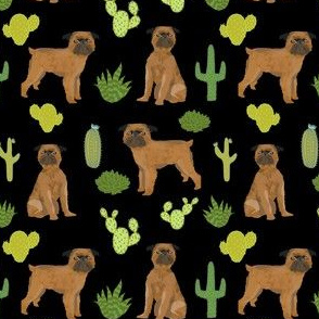 brussels griffon cactus smooth black