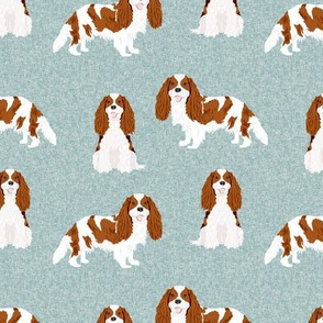 cavalier king charles spaniel blenheim pet quilt b collection coordinate