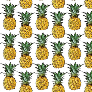 Baby Pineapples - Large Print - White Background