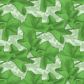 Ivy leaves green 8A Caa