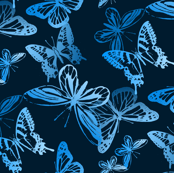 Midnight Flyers/Butterflies Monochrome Turquoise