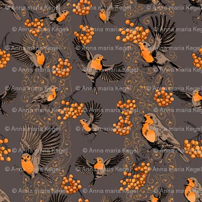 playful robins