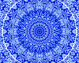 Rrbluewhitemedallion02_24insquare-fill-150dpi_thumb