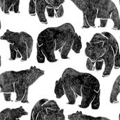 Bold Black Bear Print