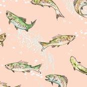 Rfish-salmon-01_shop_thumb