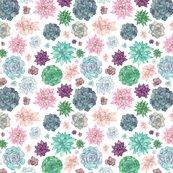 Rsucculent-pattern-1-merged_shop_thumb