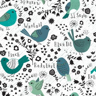 Rainy Day Birdwatching Sketches