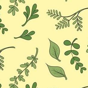 Herbs on yellowish background