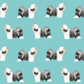 tibetan terrier dog breed fabric standing blue