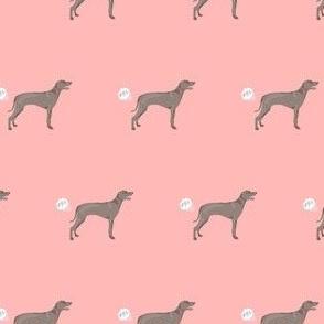 weimaraner dog fart dog breed fabric pink