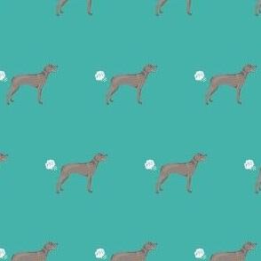 weimaraner dog fart dog breed fabric teal