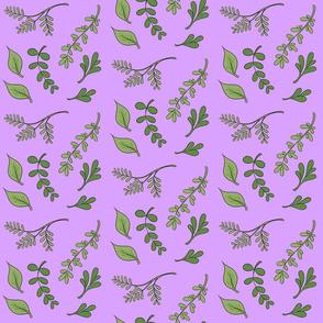 Herbs on purple background