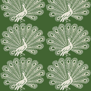 Peacock (olive)