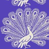 Rpeacock-purple_shop_thumb