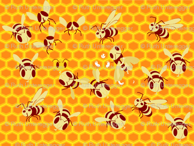 Behive-ch