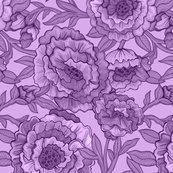 Rpeony-variations-plum_shop_thumb
