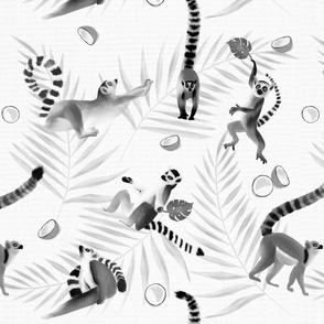 Namaste, Yogi Lemurs.