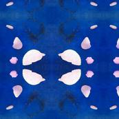 Seashell Kaleidoscope