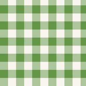 Pale Green Check