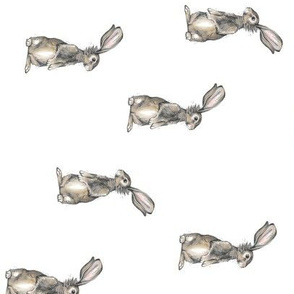 Rabbits on White - Rotated