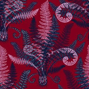 Orchid-Navy Ferns (burgundy)