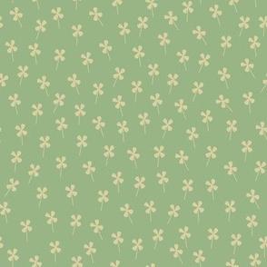 Tiny Field of Clovers