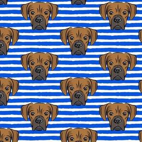boxers on dark blue stripes - dog fabric