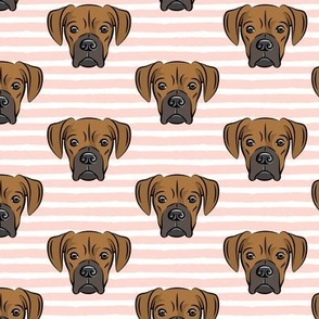 boxers on rose stripes - dog fabric
