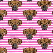 Rboxer-dog-patterns-05_shop_thumb