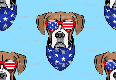 patriotic boxer on blue