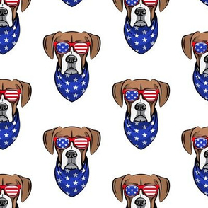 patriotic boxer on white