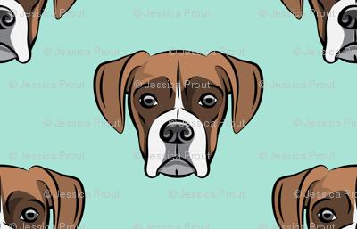 boxer face w/white