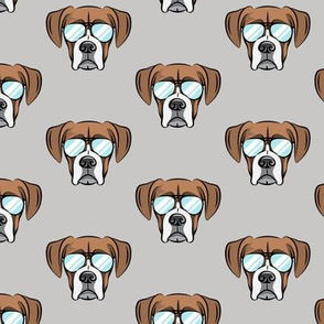 boxer with sunnies on grey