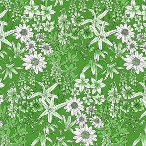 Wild Flowers in a Field Green