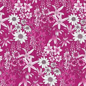 Wild Flowers in a Field Pink