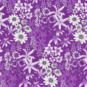 Wild Flowers in a Field Purple
