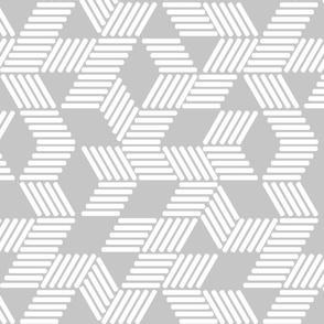 Geometric Maze_White Stripes on Gray