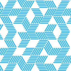 Geometric Maze_Blue Stripes