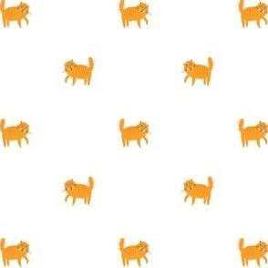 Orange Cat small