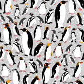 All the Pretty Penguins
