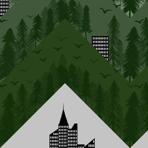 deforestation forest chevron large