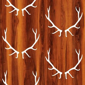 Elk Antlers // Cherry Wood Grain // Small